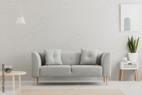 Obraz Green plant on a scandinavian cabinet with drawer and a cozy couch with pillows in a gray, simple living room interior with place for a coffee table. Real photo. - fototapety do salonu