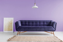 Purple, Velvet Sofa And A Beige Rug In A Pastel Lavender Living Room Interior With A Poster Mock-up. Real Photo.
