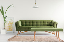 Olive Green, Stylish Settee An...