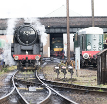 92214 Leaving The Sheds