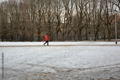 Vigeland Sculpture Park on a breezy winter day Poster