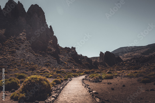 Foto op Plexiglas Diepbruine Nature and landscapes in Vulcanic Tenerife