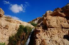 En Gedi, Israel