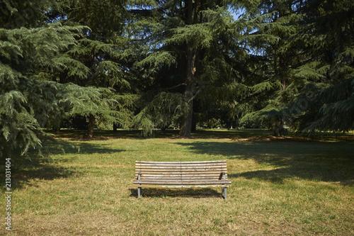 Valokuva una panchina nel parco