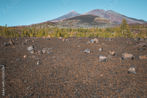 Foto op Aluminium Cappuccino Nature and landscapes in Vulcanic Tenerife