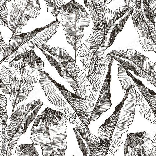 Tropic Plants Floral Seamless Jungle Pattern Print Vector