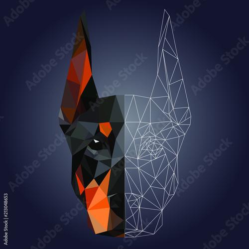 Carta da parati Low poly triangular dog doberman face on dark background,  vector illustration EPS 10 isolated