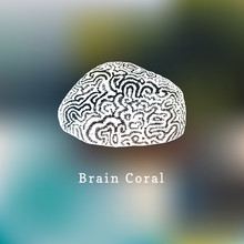Brain Coral Vector Illustration.Drawing Of Sea Polyp On Blurred Background.
