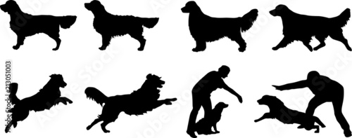 Foto Golden Retriever - Silhouetten