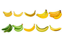 A Set Of Ten Bananas In Different Colors And Shapes