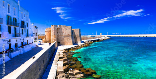 Foto  Beautiful coastal tow Monopoli in Puglia, view with medieval castle