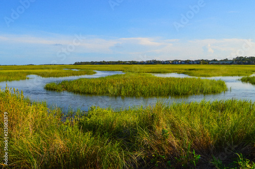 St. Simons Island, GA Village Creek Landing Marsh Wallpaper Mural
