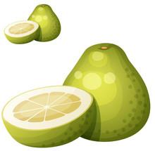 Pomelo Fruit. Cartoon Vector I...