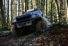 Sport Utility Vehicle Or SUV Overcomes Obstacles. Offroad Race On Fall Nature Background. Motor Racing In Autumn Forest. Rallying, Competition And Four Wheel Drive Concept.