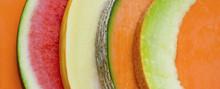 Melon Abstract