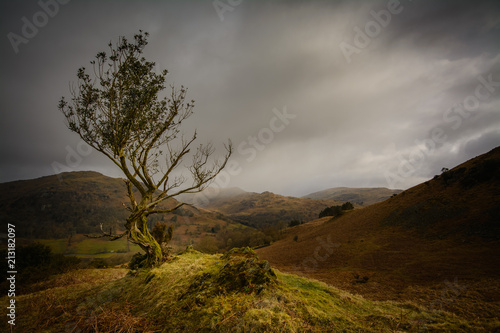 Foto op Plexiglas Donkergrijs Uk Lake District