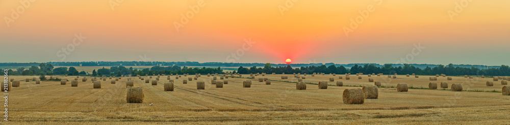 Fototapety, obrazy: wheat field with bale of straw after harvest under the western sun