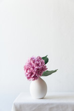 A Pink Hydrangea Flower In A Small Egg Shaped White Vase.