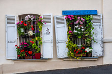 Flowers Boxes In A Window In Paris