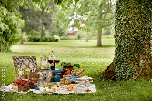 Stickers pour porte Pique-nique Outdoors lifestyle picnic in a lush green park