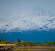 Row Of Trees And Mountains On The Background. Patagonia, Argentina