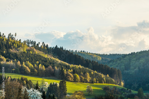 Deurstickers Wit Landscape Black Forest with mountains in Germany