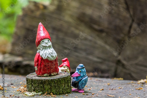 Gnomes with red caps and a blue bird in the middle of the forest Canvas Print