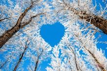 Sky With A Beautiful Heart