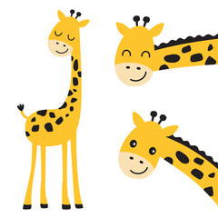 Fototapeta Żyrafa Cute smiling and peeking giraffe vector illustration.