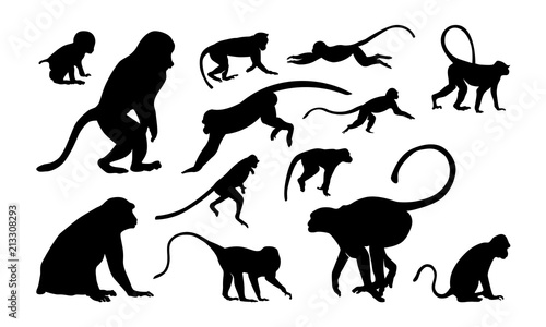 Photo Set of Monkey Silhouette vector illustration