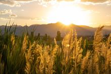 Beautiful Utah Sunset Behind Suburb