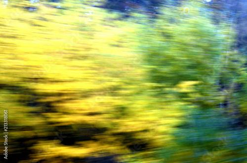 Fotobehang Zwavel geel An einem Zug vorbeiziehende Landschaft im Herbst