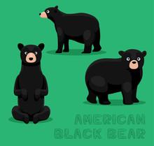 Bear American Black Bear Cartoon Vector Illustration