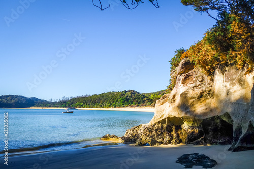 Foto op Canvas Oceanië Creek at sunset in Abel Tasman National Park, New Zealand