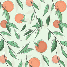 Summer Fruit Peach Banner. Vec...