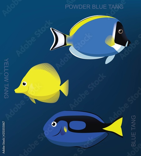 Photo  Reef Surgeonfish Set Cartoon Vector Illustration
