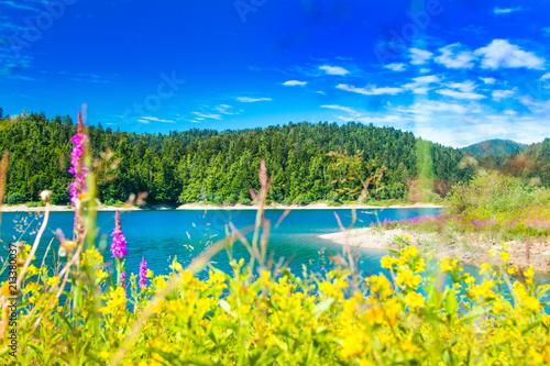 Montage in der Fensternische Gelb Beautiful blue bay on Lokvarsko lake in colorful landscape, Lokve, Gorski kotar, Croatia, blurred grass