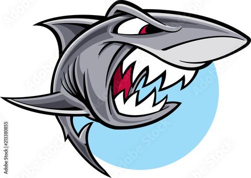 Fototapeta premium Great white shark