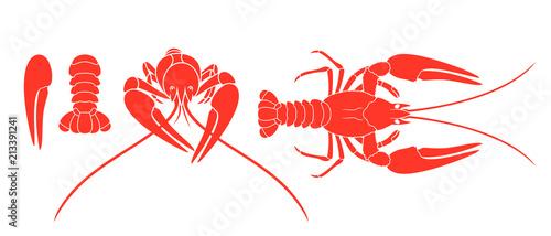 Fotografiet Crayfish logo. Isolated crayfish on white background