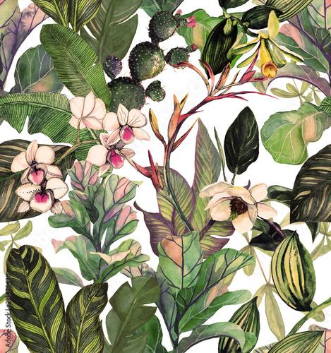 wzor-z-tropikalnych-lisci-i-kwiatow-wzor-akwareli-z-kwiatem-magnolii-storczykow-kaktusa-bialej-orchidei-phalinopsis-tlo-botaniczne