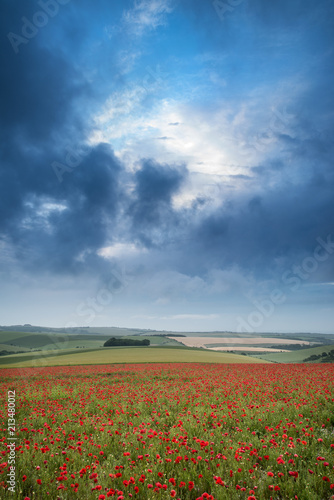 In de dag Blauwe jeans Beautiful landscape image of vibrant poppy field at sunrise in South Downs National Park