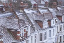 Snow City Buildings
