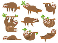 Cartoon Sloths Family. Adorabl...
