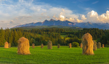 Hay In Haystacks On A Mountain Meadow During Haymaking, Tatra Mountains, Poland