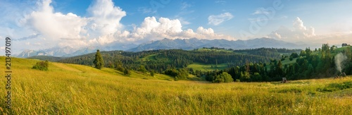 Foto auf Gartenposter Gebirge Panorama of the Tatra Mountains in Poland, mountain meadow.