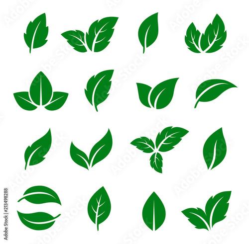 Fototapety, obrazy: set of green leaf icons