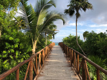 View Of Bridge To Beach With Palm Trees .