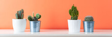 Collection Of Various Cactus Plants In Different Pots. Potted Cactus House Plants On White Shelf Against Coral Orange Colored Wall. Cactus Plants Banner.