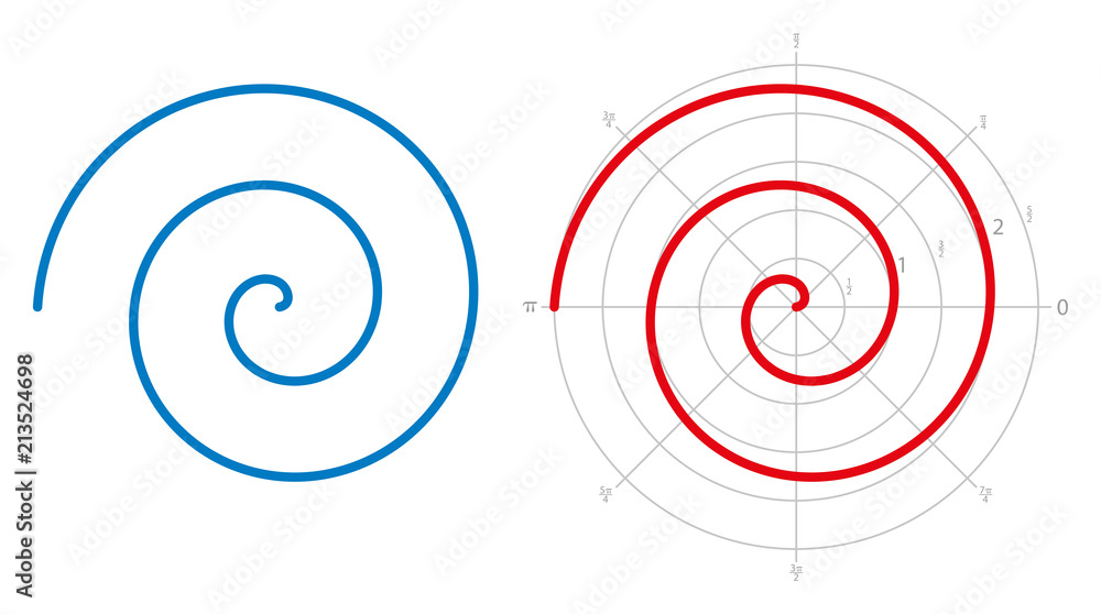 Fototapeta Archimedean spiral on white background. Three turnings of one arm of an arithmetic spiral, rotating with constant angular velocity. Red spiral is represented on a polar graph. Illustration. Vector.