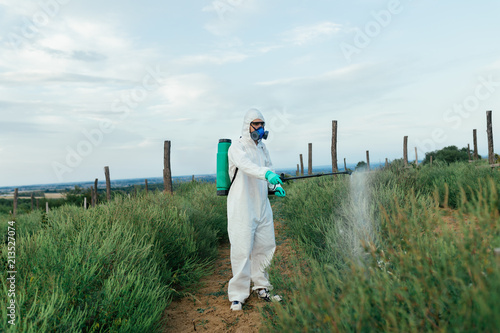 Canvas Print Agriculture pest control - Worker in protective workwear in weed control and spraying ambrosia on field